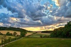 Evening summer landscape. Summer landscape of the setting sun Stock Photos
