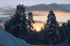 Evening sun. Sun on a winter night vector illustration