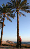 Evening sun. Man standing relaxed under palm tree Royalty Free Stock Photos