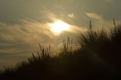 Evening sun above the dunes. The early evening sun slowly begins to descend. I walked between the Dutch dunes and made a series of beautiful pictures of this Royalty Free Stock Photography