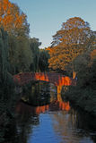 Evening sun of bridge, river and trees. Stock Image