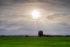 Evening Sun shines on the field. Evening Sun shines on the field in coutry town Royalty Free Stock Photos