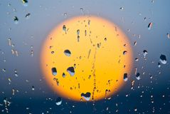 Evening sun  in a water drops Stock Photography