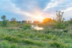 Evening or sunrise on a quiet forest lake royalty free stock photos