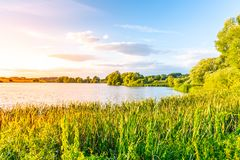 Evening sunset at calm pond and lush greenery of south bohemian landscape, Czech Republic.  stock images