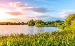 Evening sunset at calm pond and lush greenery of south bohemian landscape, Czech Republic.  stock photo
