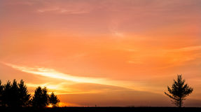 Evening sunset on the field Royalty Free Stock Photography