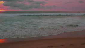 Sunset on the beach stock video