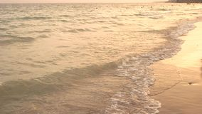 Evening sunset at the sea. stock footage