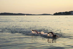 The evening swim. Swim in the Adriatic Sea at sunset royalty free stock image