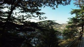 Evening Tbilisi summer stock footage