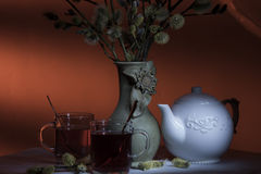 Evening tea for two Stock Photography