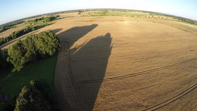 Evening time agriculture farmland field with tree shadows, aerial view stock video footage