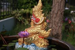 Thai Dragon with small lotus Royalty Free Stock Image