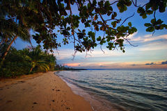 Evening on tropical beach Stock Photo