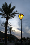 View of sky, palm trees and street lamp Stock Images