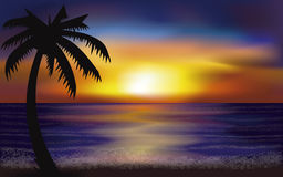 Evening tropical sea, vector. Illustration Stock Photos