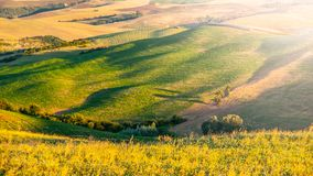 Evening in Tuscany. Hilly Tuscan landscape on sunny summer evening stock photos
