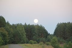 Evening. Twilight. Moon stock image