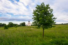 Evening view through Bogolubovo meadow towards the Church of the Intercession of the Holy Virgin on the Nerl River. royalty free stock photography