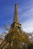 Evening view of a Eiffel tower Stock Photos