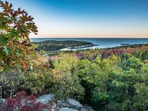 Evening view of Fall-colored Oak Leaves from Granite Overhang, Beehive Trail, Acadia National Park. Great Head and the Gulf of Maine can be seen from this Stock Photography