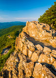 Evening view from Little Stony Man Cliffs in Shenandoah National Royalty Free Stock Photography