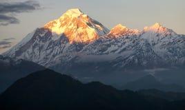 Evening view of mount Dhaulagiri. Nepal royalty free stock photo
