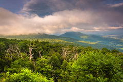 Evening view of Piedmont from Skyline Drive in Shenandoah Nation Royalty Free Stock Images