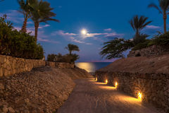 Evening view for small road and moonlit path on sea Royalty Free Stock Photo