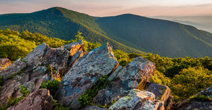 Evening view toward Hawksbill Summit from Betty's Rock, in Shenandoah National Park Stock Photo