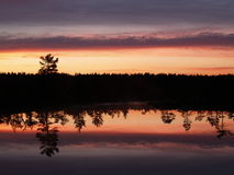 Evening in Viru marsh. Reflections on a hag Royalty Free Stock Images