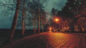 evening walk φιλμ μικρού μήκους