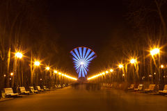 Evening walk in the park and Ferris wheel Royalty Free Stock Images