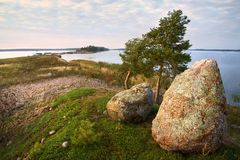 Evening watchers, two stones and dwarf pines, Baltic Stock Photography