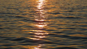 Evening Water. Calm water moving slowly as the sun begins to set Stock Photography