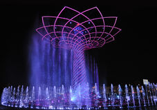 Evening water show arond the Tree of Life Stock Photography
