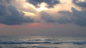 Evening wave surfers stock footage