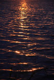 Evening Waves Royalty Free Stock Image