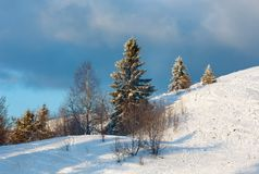 Winter evening mountain snowy landscape. Evening winter calm mountain landscape with beautiful frosting trees and ski track trace through snowdrifts on mountain Stock Image