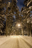 Evening winter city park with streetlights Royalty Free Stock Photo