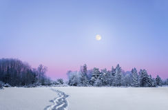 Evening winter landscape with full moon. Scandinavian evening winter landscape with forest on purple sky with full moon Stock Photography