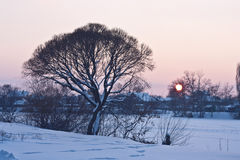 Evening winter landscape with village and trees on the riverside Royalty Free Stock Image