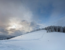 Evening winter mountain landscape Stock Photography