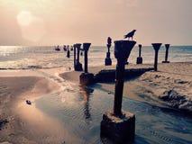 Eveningvibe del Kerala del mare immagine stock
