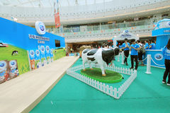 Event of Dutch Lady Pure Animal Husbandry Farm in Hong Kong Royalty Free Stock Image