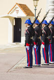 The military force performing the Change of Guard Royalty Free Stock Photo