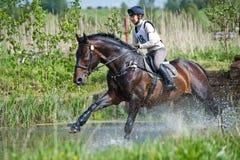 Eventer auf Pferd ist überwindt den Wasserschwall Lizenzfreie Stockfotos