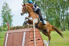 Eventer en caballo es salto la cerca a campo través Fotografía de archivo