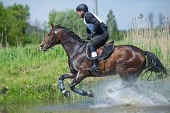 Eventer en caballo es supera el salto de agua Fotografía de archivo libre de regalías